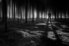 witchcraft the demonic and mis interpretation in hawthorne u0027s