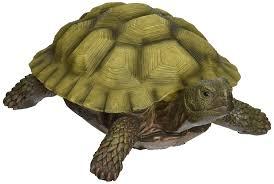 design toscano gilbert the box turtle statue