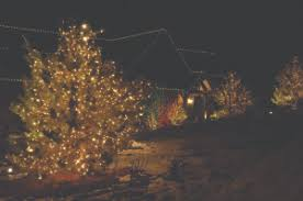 Outdoor Christmas Decorations Installers edmonton holiday lighting installers five star holiday decor