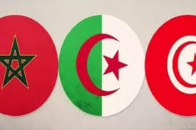 Algerian Flag 16 North Africans Feature In 100 African Leaders U0027 List U2013 Middle