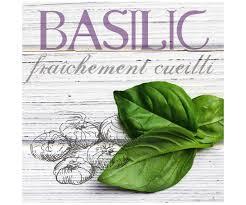 basilic cuisine tableau toile cadre cuisine maison basilic aromate fraicheur