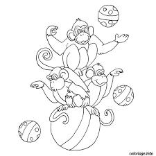 coloriage singe cirque dessin