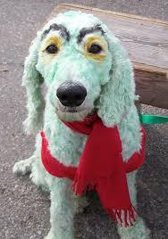 Winnie Pooh Dog Halloween Costume 25 Halloween Costumes Dogs