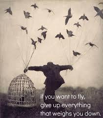 birds cage quote image 597350 on favim com