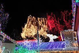 san francisco tree lighting 2017 10 best holiday light displays 2017 in san francisco