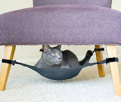 Cat Under Chair 10 Unique Wacky Fun Gifts For Cats And Cat Lovers Band Of Cats