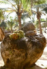 beach resort waikoloa beach resort master