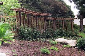 Pictures Of Pergolas In Gardens by Wish List Trellis Pergola But With Benches On The Bottom Or A
