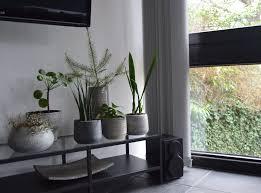deko in grau wohnzimmer deko grau konzept rodmansc org