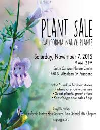 california native plants for sale cnps plant sale weeding wild suburbia