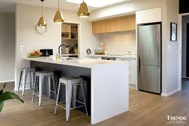 Kitchen Design Nz Gallery Trends Kitchens