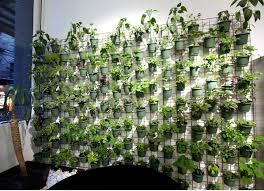 wonderful vertical garden home top 52 ideas about indoor gardens