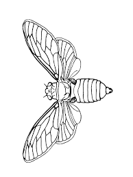 56 dessins de coloriage insecte à imprimer sur LaGuerchecom  Page 3