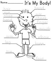 parts of the body printable worksheets give a like educational