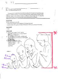 modern genetics human inheritance answer key 28 images modal