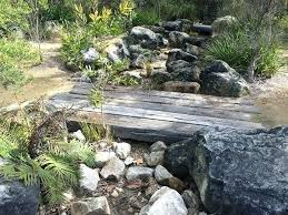 native australian garden design ideas google search google