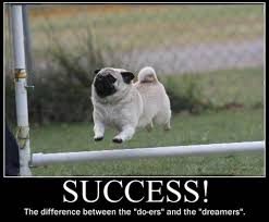 Funny Animal Meme - 32 funny animal meme that make you laugh