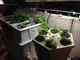 Greenhouse Starter Kits 25 Best Hydroponic Starter Kit Ideas On Pinterest Seed Starter