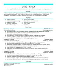 Resume Manager Sample Of A Professional Resume Resume For Your Job Application