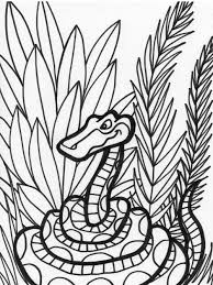 click the plains garter snake coloring pages striped snake