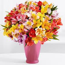 flowers delivery cheap https www flowerwyz lovely yet cheap flowers flowerwyz