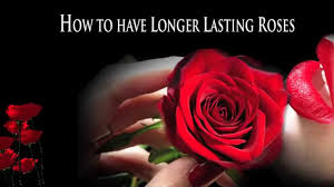 how to preserve flowers how to preserve wedding flowers youtube
