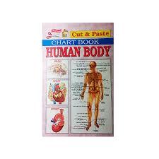 Online Human Body Human Body U2013 Mahamaya Publications