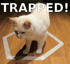 Cat Trap Meme - funny cats crimes and escape funny cats image 2781232 by
