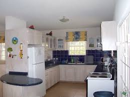 kitchen window backsplash appliances hawaian style curtain with white top freezer fridge