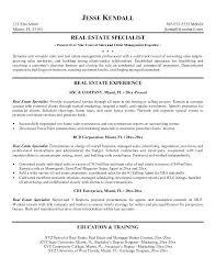 sample real estate resume no experience flight attendant resume