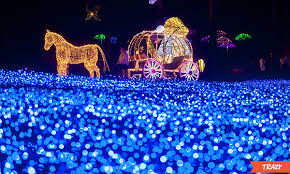 garden of lights hours all about the garden of morning calm lighting festival 2018 trazy