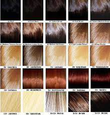 light golden brown hair color chart 13 best hair extensions color chart weave images on pinterest