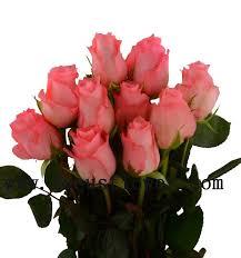 fresh cut flowers export fresh cut flowers kenya roses wholesale preserved