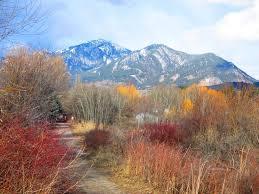 Montana scenery images 95 best montana scenery images montana scenery and jpg