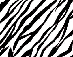 zebra pattern free download zebra print background free images at clker com vector clip art