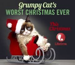 Grumpy Cat Has Died Youtube - from grumpy cat to maru to lil bub internet cats are actually