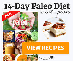 100 best paleo diet recipes of all time paleo grubs