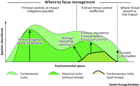 niche contractions in declining species mechanisms and