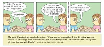 for thanksgiving overeating www funnyton