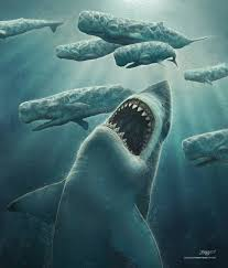 pictures of the megalodon the giant prehistoric shark shark