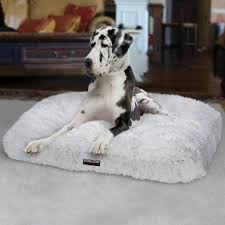 Igloo Dog Bed Furniture Rectangle Costco Dog Beds In Grey For Pet Furniture Ideas