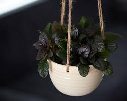 Hanging Ceramic Planter by Hanging Planter Etsy
