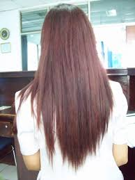back of hairstyle cut with layers and ushape cut in back best 25 v shaped layered hair ideas on pinterest v layered