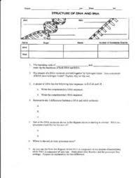 dna rna worksheet worksheets reviewrevitol free printable