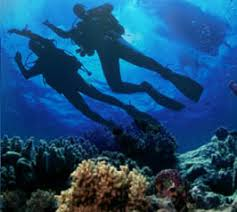 Padi Dive Tables by Scubatoronto How To Use Padi Rdp