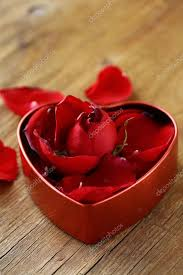 Roses In A Box Petals Of Red Roses In A Box U2014 Stock Photo Dream79 18036643