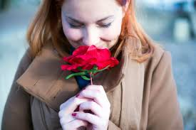 13 things your florist won u0027t tell you reader u0027s digest