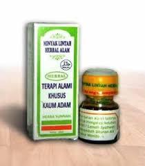 minyak lintah semarang toko herbal semarang