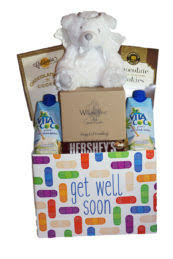 Get Well Soon Gift Basket Get Well Soon Archives Gifting Tampa Bay