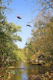 Treetop Canopy Tours by Where To Find A Zipline In America